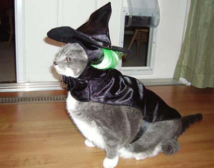 Halloween-IndignantWitch
