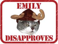 Emilydisapprovesweb