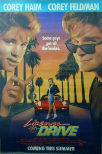 License_to_drive_poster
