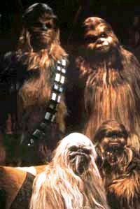 Meetthewookiees